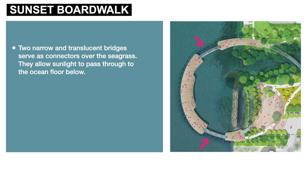 Two narrow and translucent bridges serve as connectors over the seagrass. They allow sunlight to pass through to the ocean floor below.