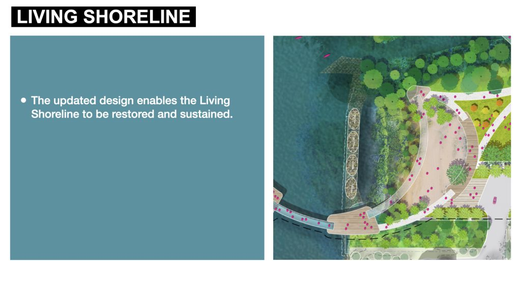 The updated design enables the Living Shoreline to be restored and sustained.