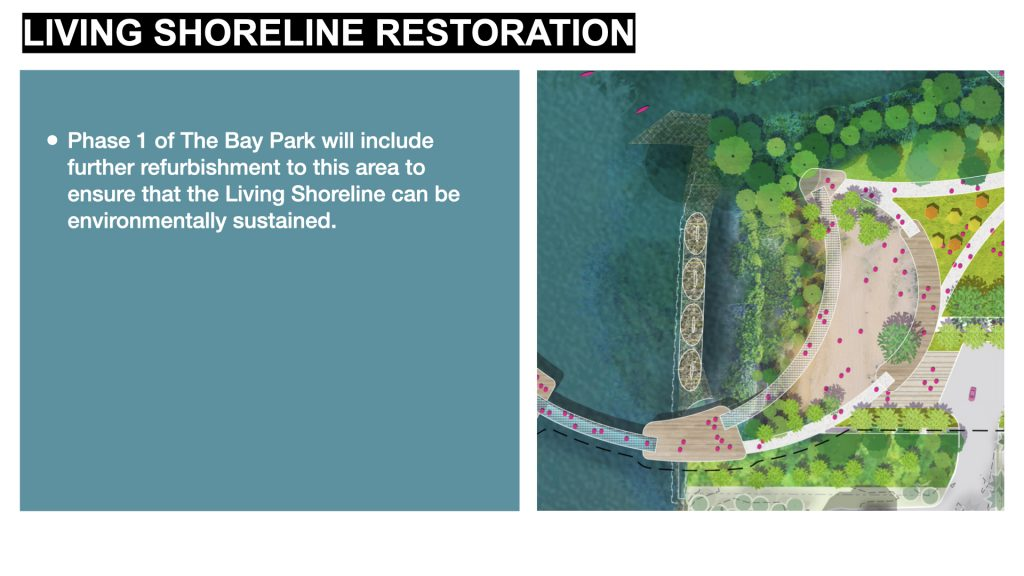 Phase 1 of The Bay Park will include further refurbishment to this area to ensure that the Living Shoreline can be environmentally sustained.